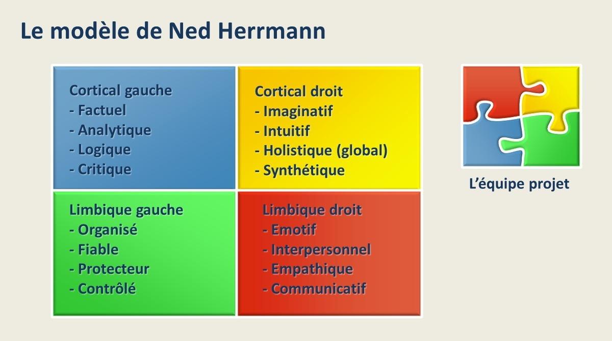 Le modèle de Ned Herrmann